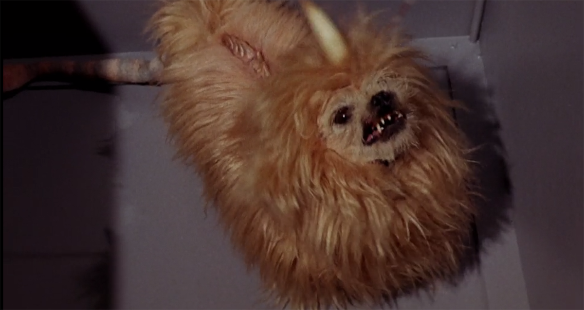 Brady Bunch Dogs Name
