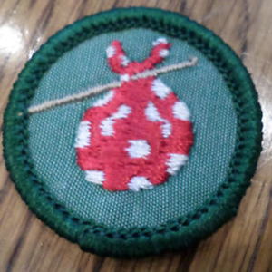 14 retired Girl Scout badges