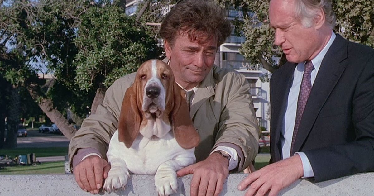Image result for columbo dog